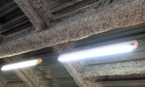 LED直管5